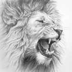 Roaring Lion - Small